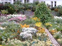 2003-07-02_Lehrfahrt_Heidelberg_190