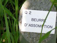 2007_Lehrfahrt_Elsass_205