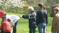 vereinsgarten-asperg